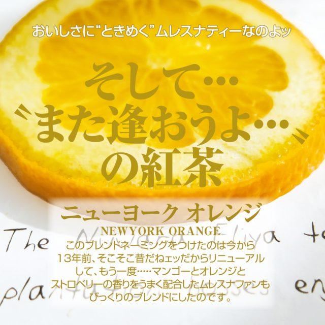ニューヨークオレンジ【人気No.16】